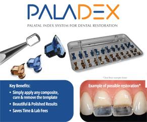 Paladex Brochure Image